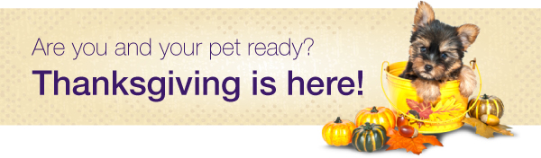 Are you and your pet ready?