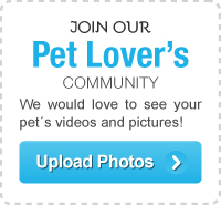 PetPremium's Pet Lovers